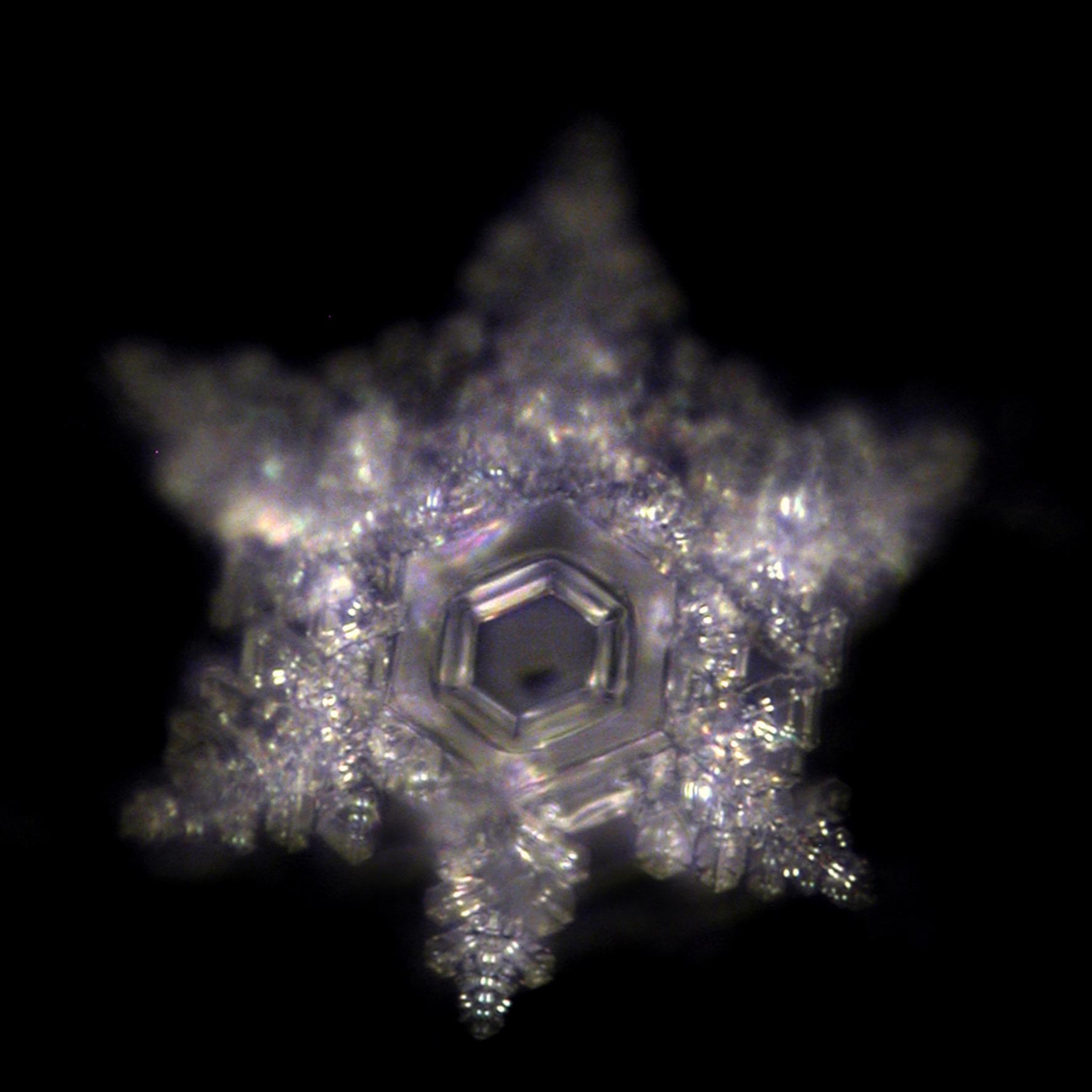 B_Wasserkristall_genesis-pro-life